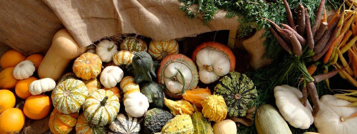 Pour manger bio, local et pas cher, regroupez-vous ! <br>Un conseil de Mam Fenotte