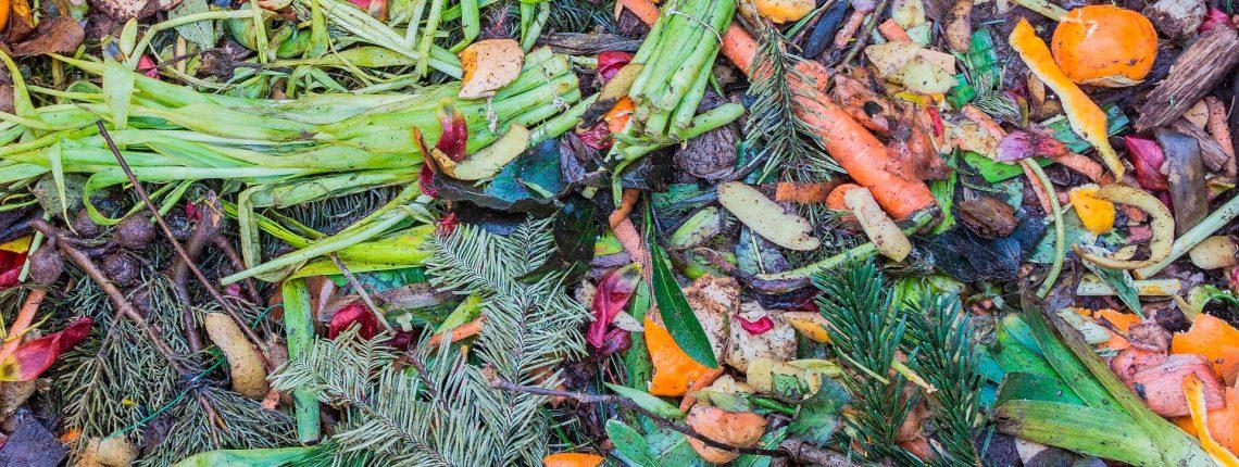 Faire son compost : tout un art !